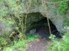 Rezerwat przyrody Skorocice