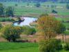Ponidzie – Rezerwat przyrody Krzyżanowice